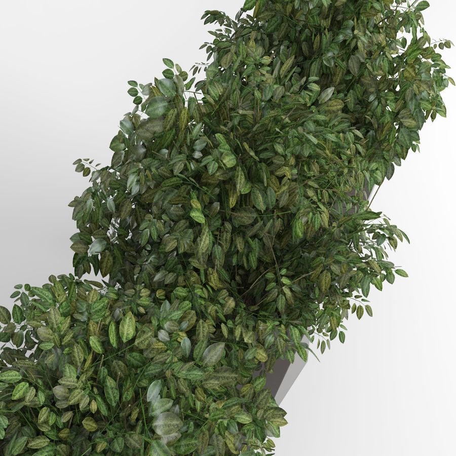 Plantas para interior y exterior 2 royalty-free modelo 3d - Preview no. 7