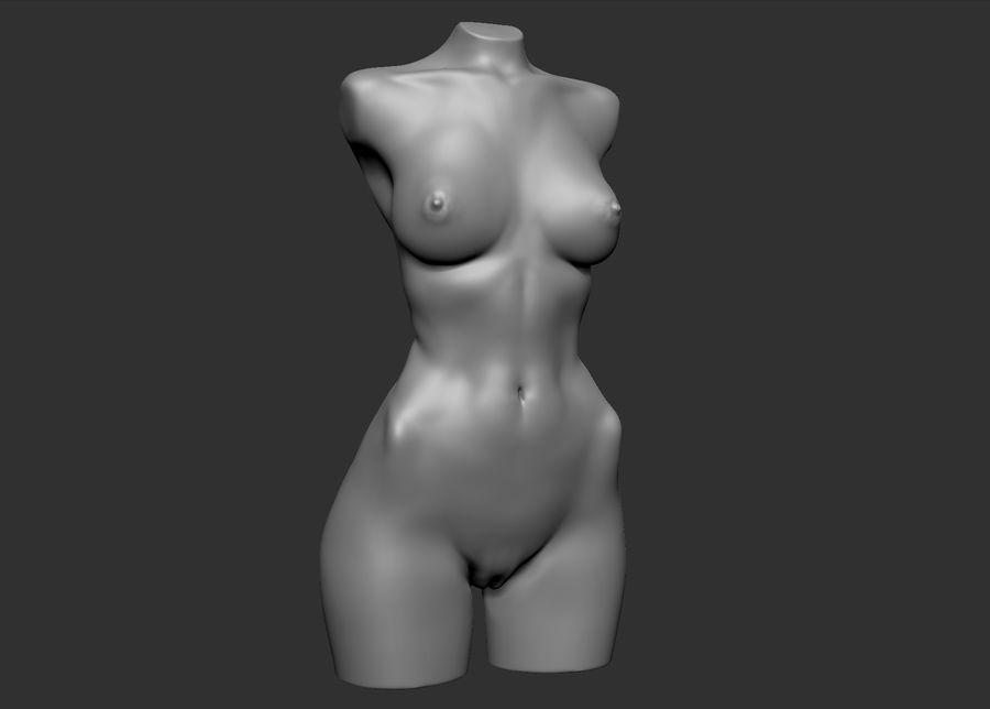 Красота Женщина Торс royalty-free 3d model - Preview no. 12