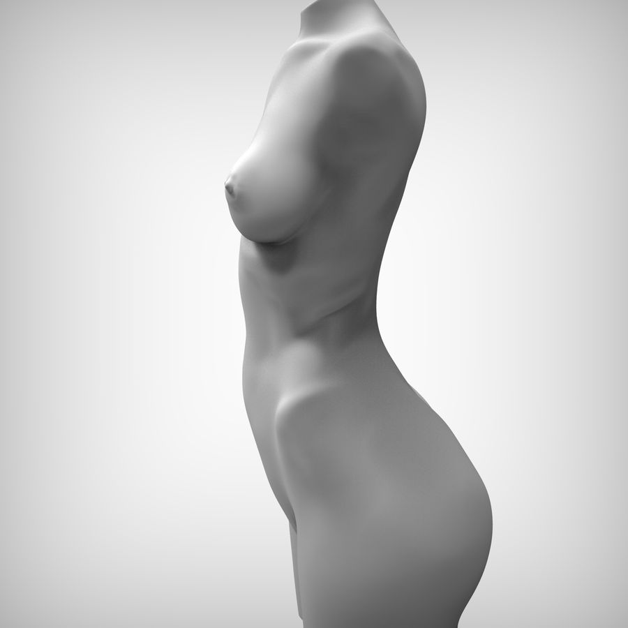 Красота Женщина Торс royalty-free 3d model - Preview no. 7