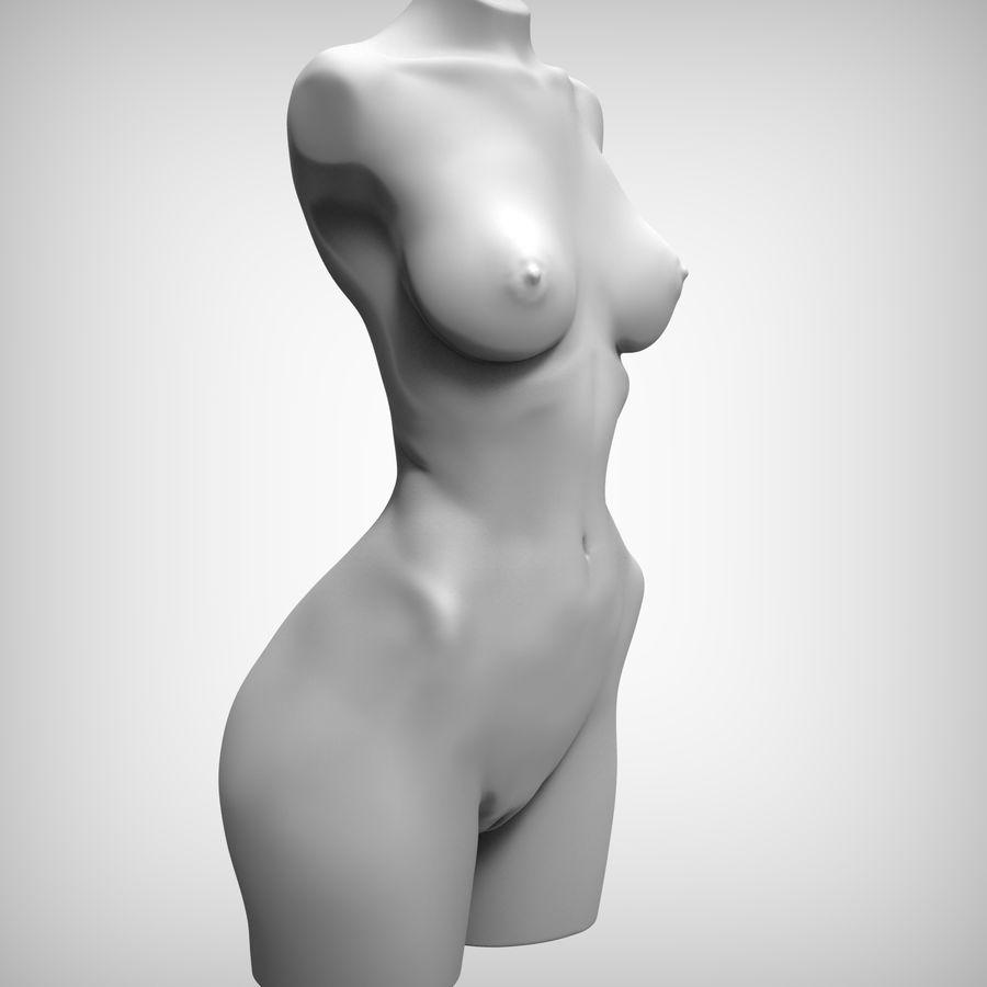 Красота Женщина Торс royalty-free 3d model - Preview no. 5