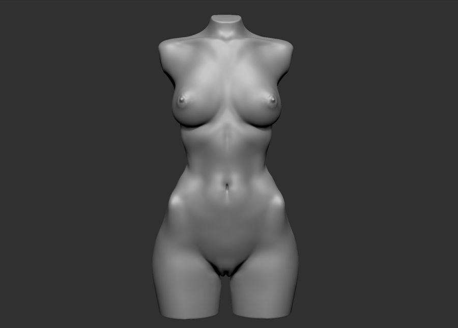 Красота Женщина Торс royalty-free 3d model - Preview no. 11