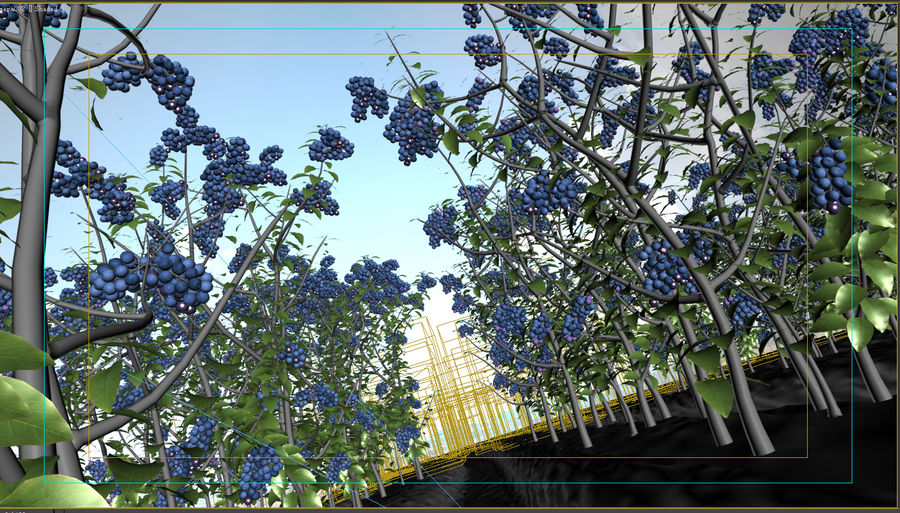 Blueberry Field royalty-free 3d model - Preview no. 3