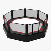 Octagon Boxing Ring 3d model