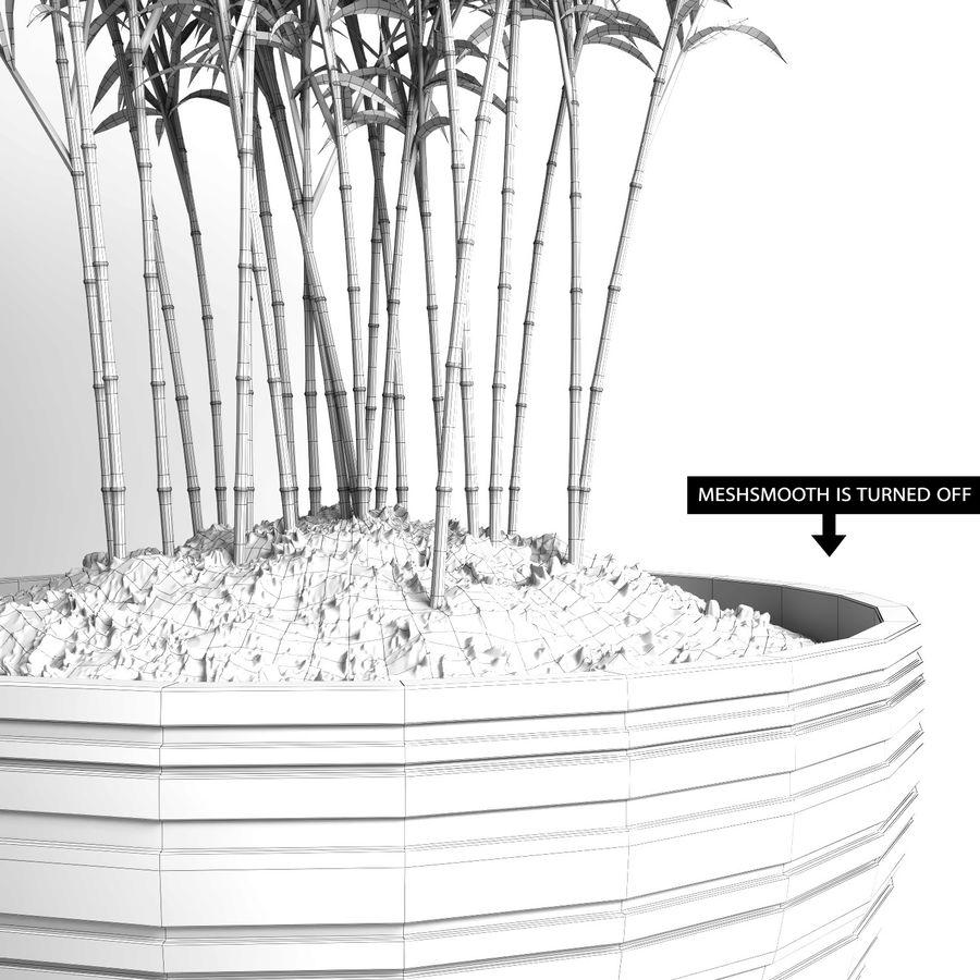 Bambúes paraguas (+ GrowFX) royalty-free modelo 3d - Preview no. 17