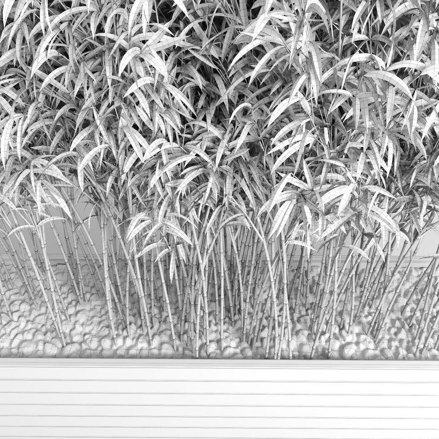 Plantas de bambú (Fargesia Murielae) royalty-free modelo 3d - Preview no. 14
