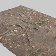 뿌리 3d model
