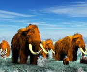 Mammoth; Woolly Mammoth 3d model