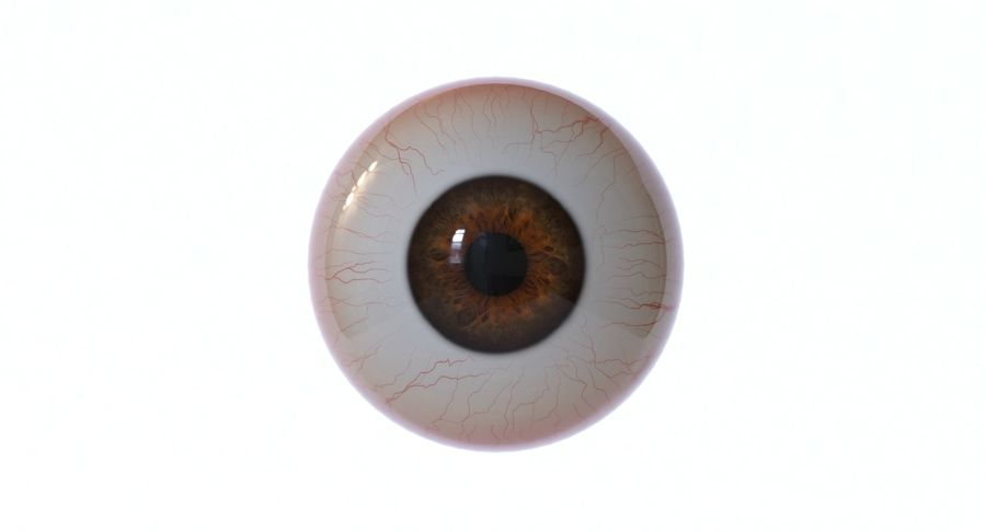 Eyeball royalty-free 3d model - Preview no. 8