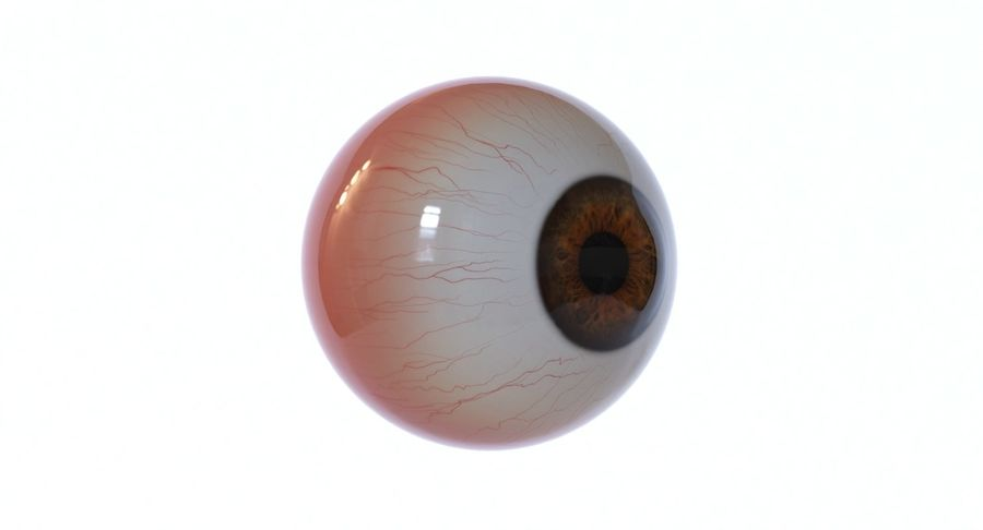 Eyeball royalty-free 3d model - Preview no. 9