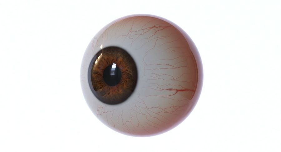 Eyeball royalty-free 3d model - Preview no. 4