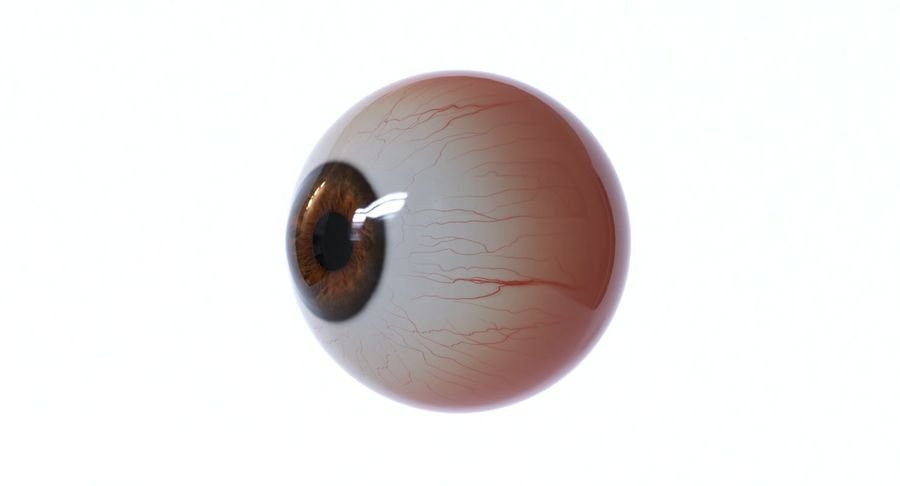 Eyeball royalty-free 3d model - Preview no. 11