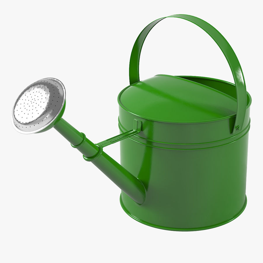 Green Watering Can royalty-free 3d model - Preview no. 1