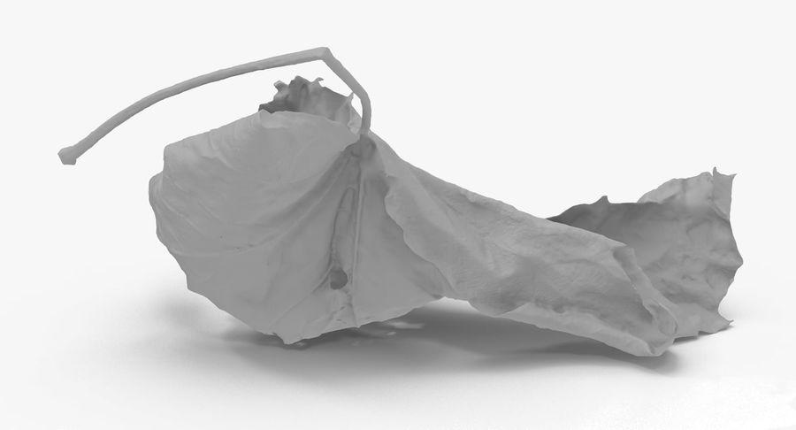 Ölü Yaprak royalty-free 3d model - Preview no. 9