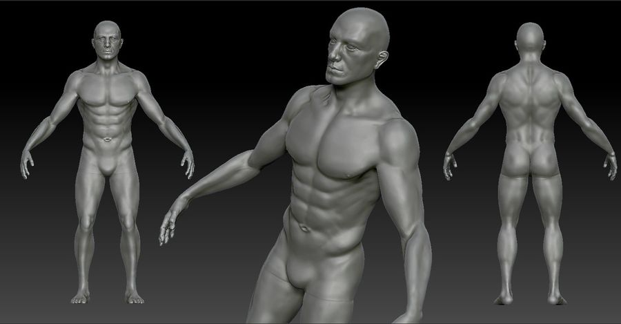 Anatomy based character (2) royalty-free 3d model - Preview no. 1