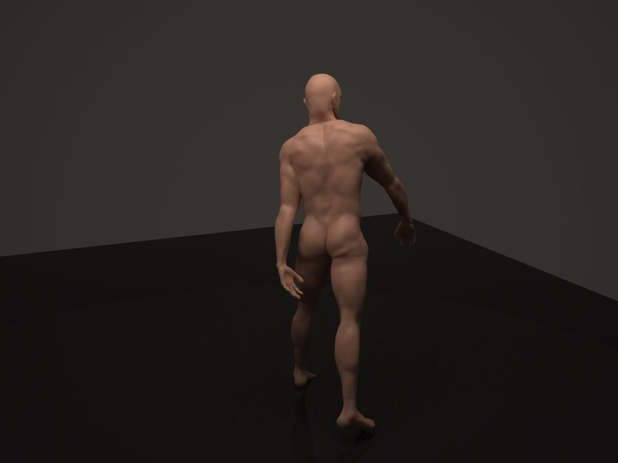 Anatomy based character (2) royalty-free 3d model - Preview no. 5