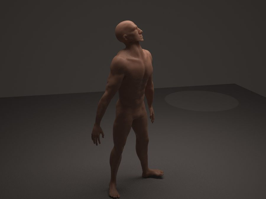 Anatomy based character (2) royalty-free 3d model - Preview no. 4