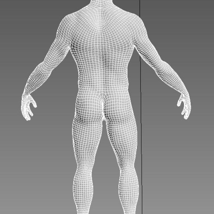 Anatomy based character (2) royalty-free 3d model - Preview no. 3
