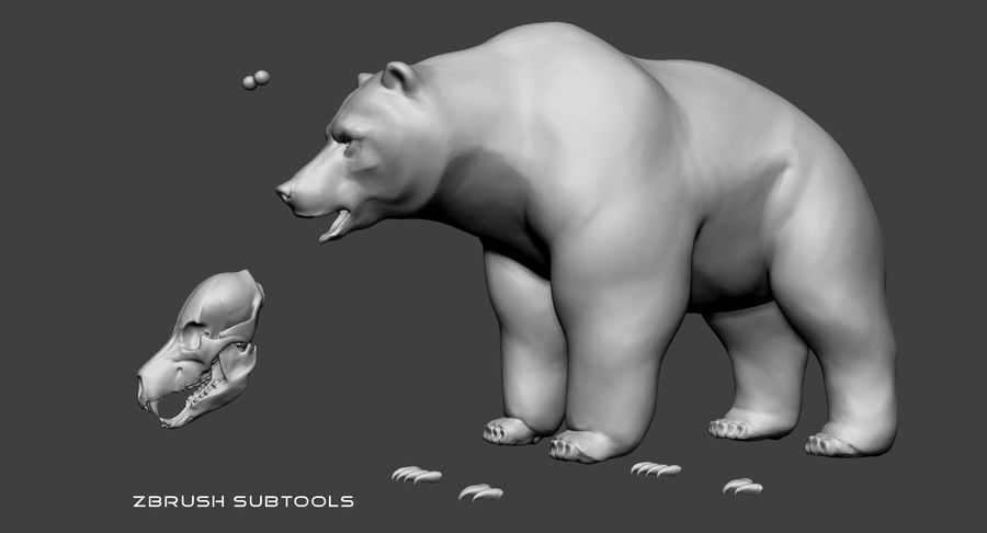 Malha base urso Grizzly royalty-free 3d model - Preview no. 7