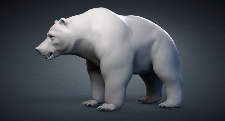Malha base urso Grizzly royalty-free 3d model - Preview no. 2