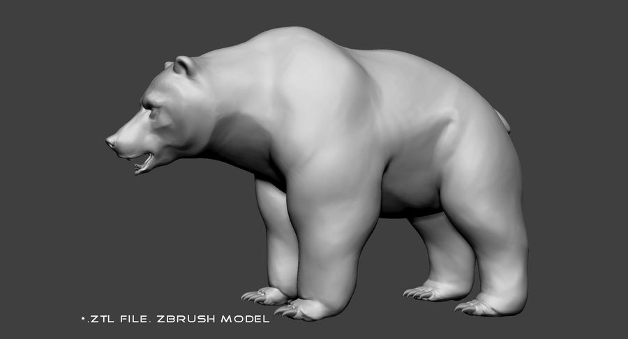 Malha base urso Grizzly royalty-free 3d model - Preview no. 8