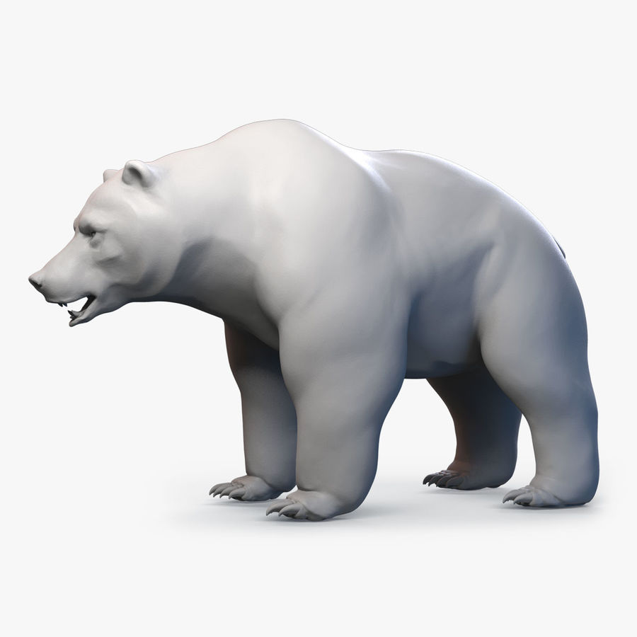 Malha base urso Grizzly royalty-free 3d model - Preview no. 1