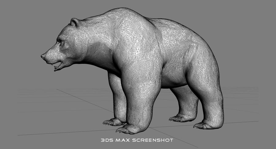 Malha base urso Grizzly royalty-free 3d model - Preview no. 15