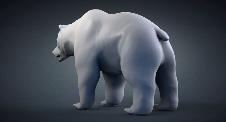 Malha base urso Grizzly royalty-free 3d model - Preview no. 4