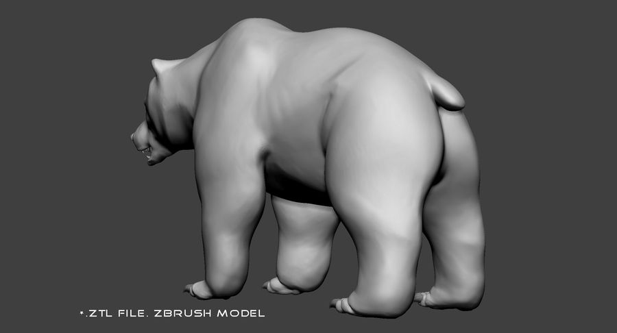 Malha base urso Grizzly royalty-free 3d model - Preview no. 10