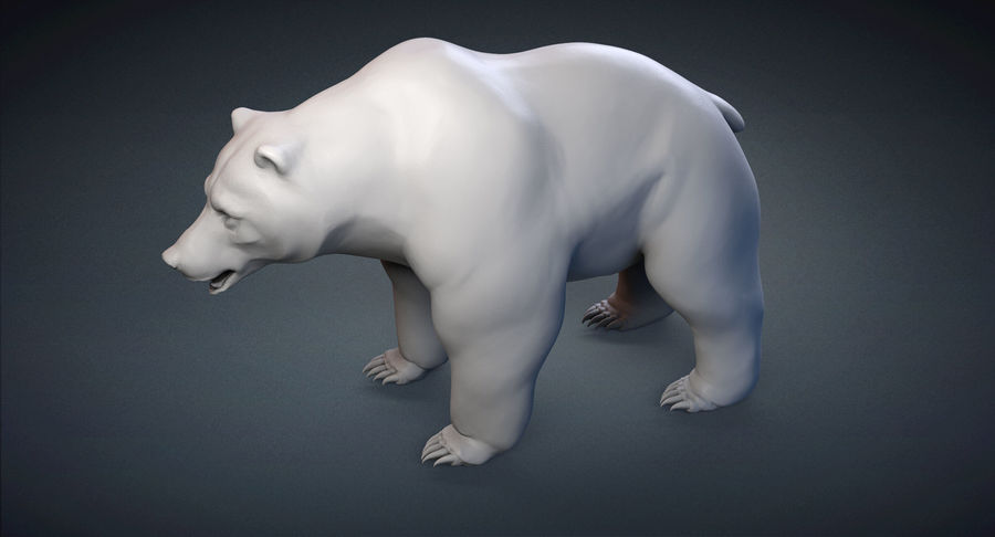Malha base urso Grizzly royalty-free 3d model - Preview no. 5