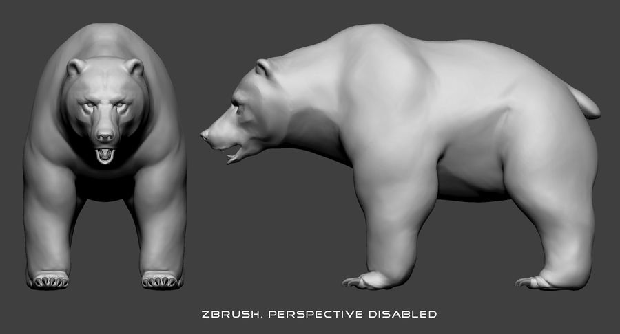 Malha base urso Grizzly royalty-free 3d model - Preview no. 12