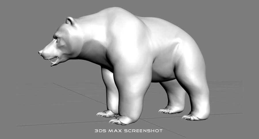 Malha base urso Grizzly royalty-free 3d model - Preview no. 14