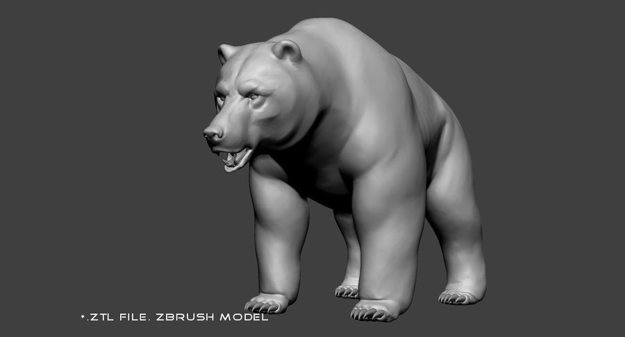 Malha base urso Grizzly royalty-free 3d model - Preview no. 9