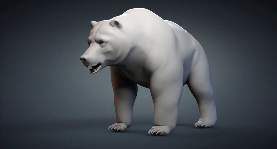Malha base urso Grizzly royalty-free 3d model - Preview no. 3