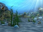 Podwodny świat 01 3d model