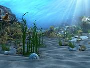 Underwater world 01 3d model