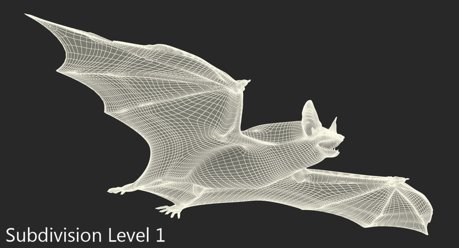 Bat royalty-free 3d model - Preview no. 17