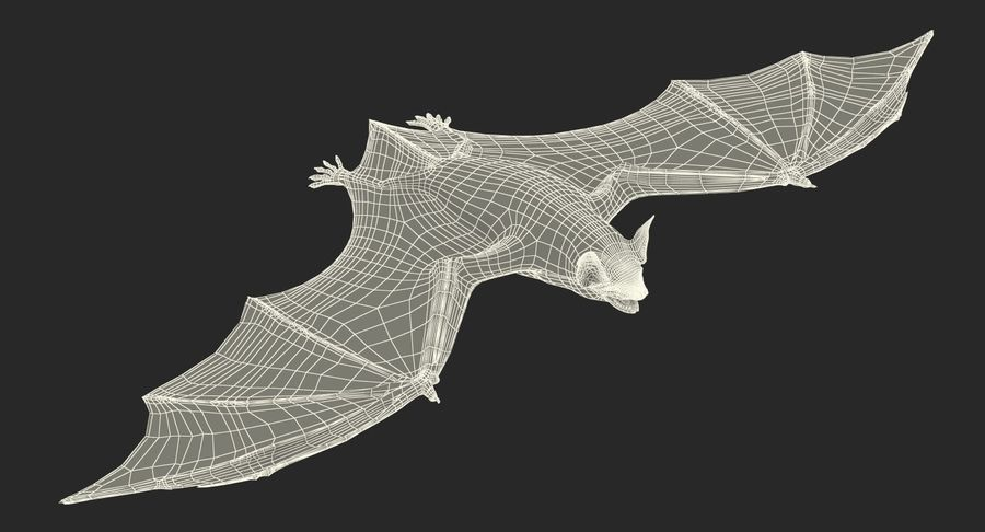Bat royalty-free 3d model - Preview no. 21