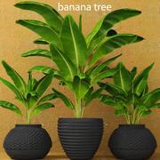 Banano modelo 3d
