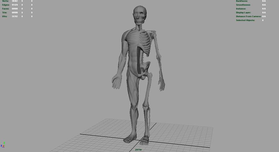 HUMAN BODY ANATOMY MODEL royalty-free 3d model - Preview no. 10