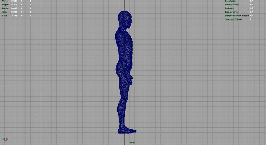 HUMAN BODY ANATOMY MODEL royalty-free 3d model - Preview no. 16
