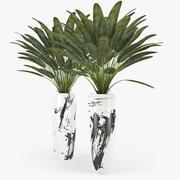 Tropikal 3d model