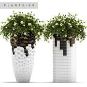 plant 69 3d model