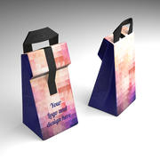 Lunch bag 3d model