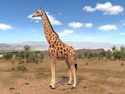 Жираф для 3dsmax 3d model