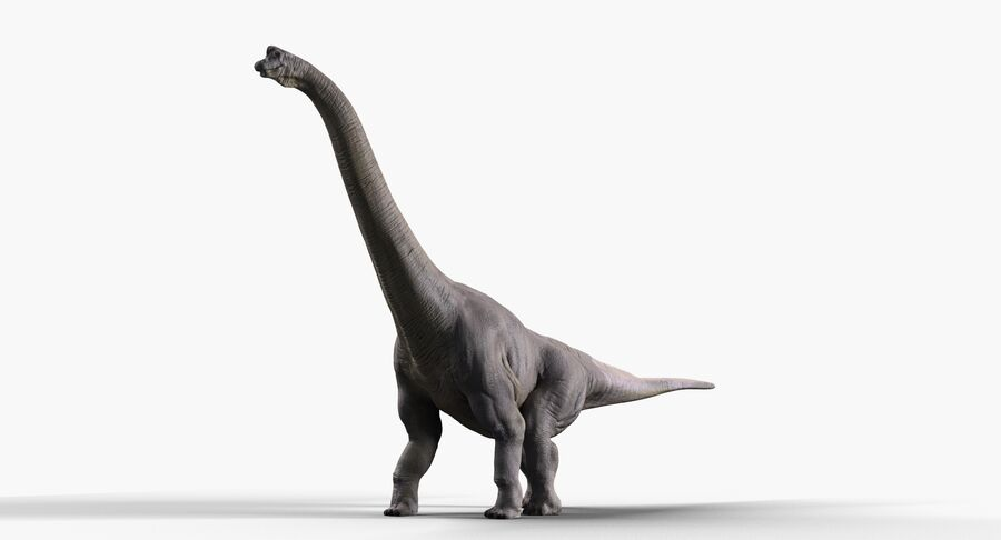 Brachiosaurus royalty-free 3d model - Preview no. 2