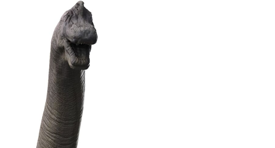 Brachiosaurus royalty-free 3d model - Preview no. 7