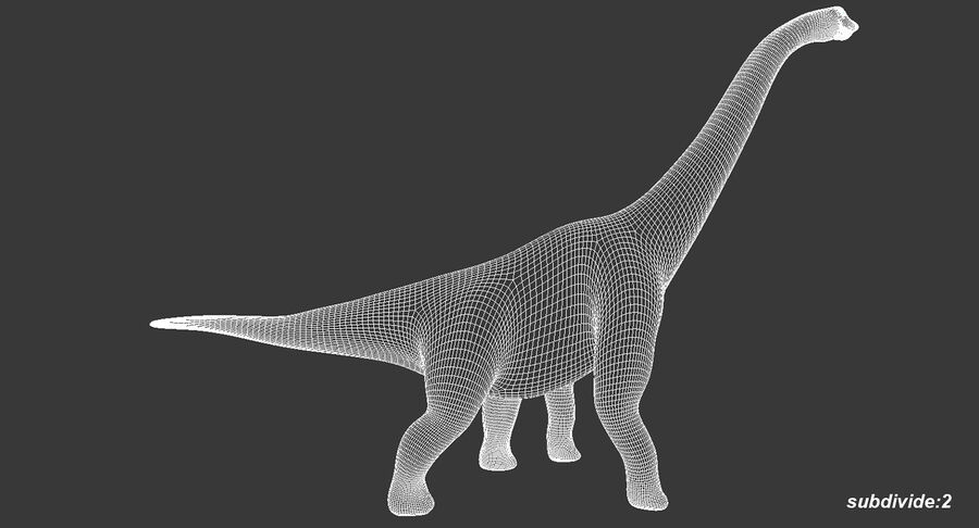 Brachiosaurus royalty-free 3d model - Preview no. 13