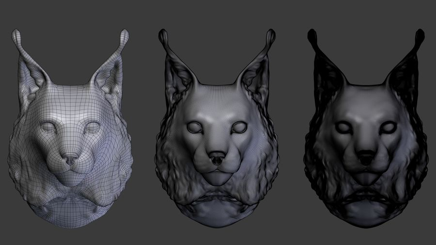 tête de lynx royalty-free 3d model - Preview no. 4