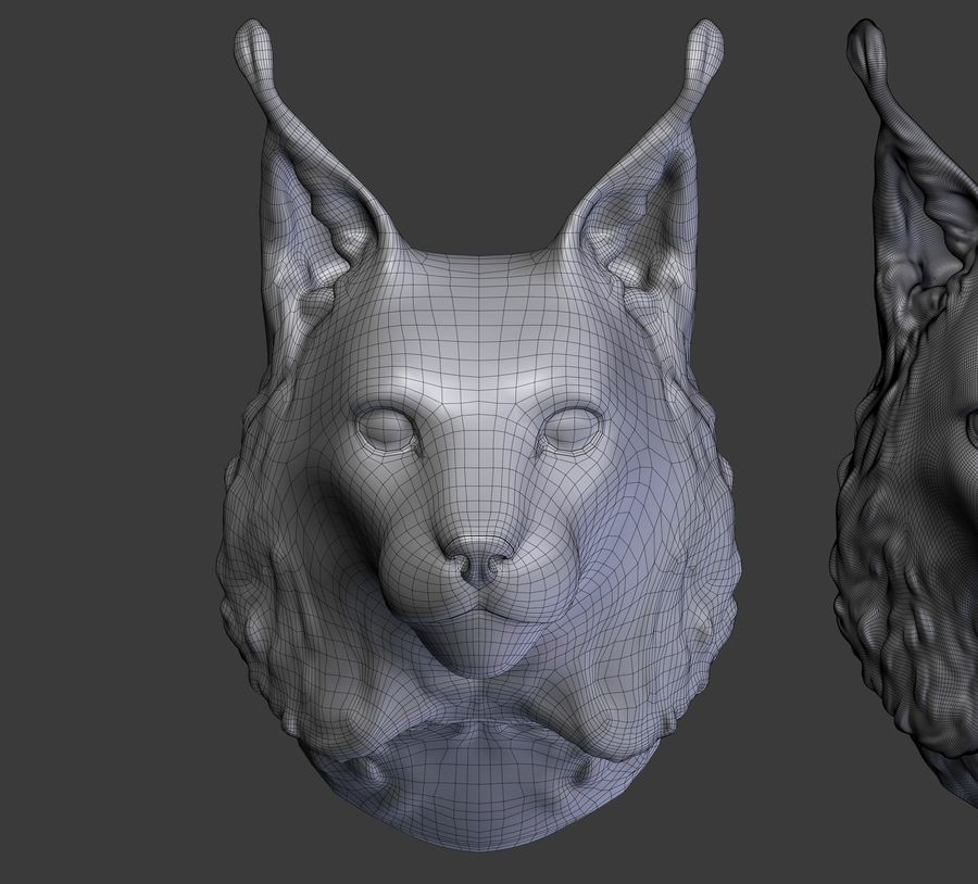tête de lynx royalty-free 3d model - Preview no. 15