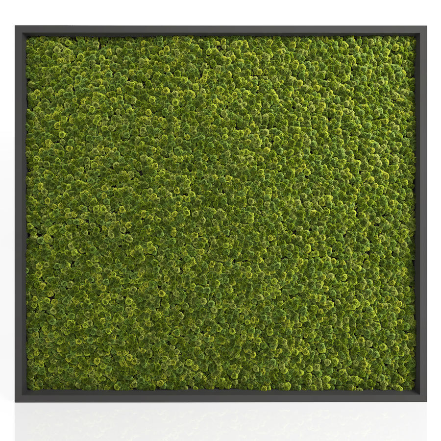 Moss Wall (Scatterable) royalty-free 3d model - Preview no. 6